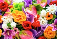 colorfulbouquet_freecomputerdesktopwallpaper_1920